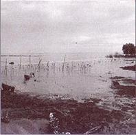 abrasi pantai: mencegahnya atau kita tenggelam!